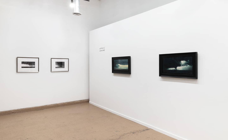 Janine Hall displays